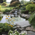 Significance of the installation of Koi Ponds at Homes