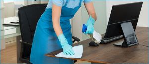 professional cleaning service Palm Beach County FL